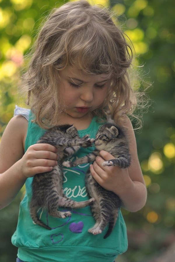 Kleines Kätzchen zwei in den Händen des kleinen Mädchens lizenzfreie stockfotografie