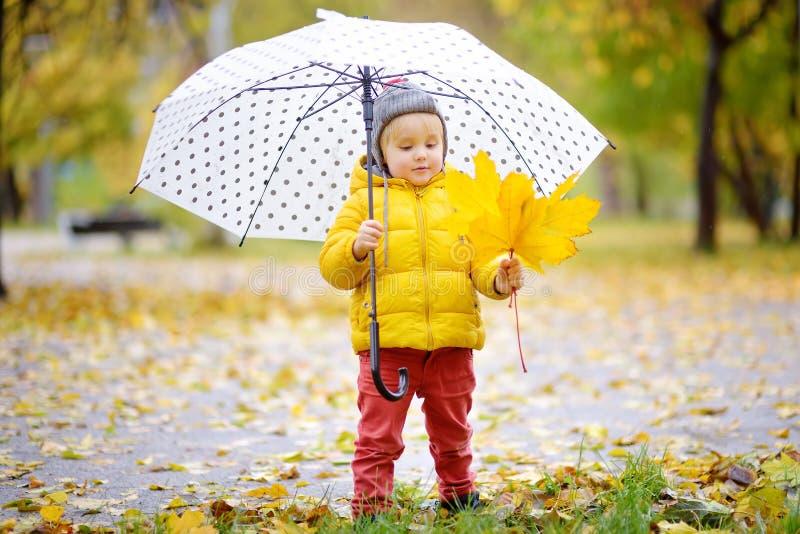 Kleines Kind, das in den Stadtpark am regnerischen Herbsttag geht Kleinkindjunge mit Regenschirm f?r Fallwetter stockfotografie