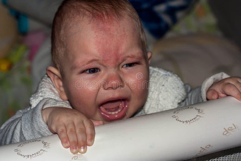 Kleines Kleinkindschreien stockbilder