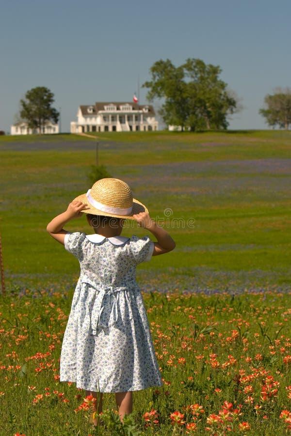 Kleines Mädchen auf dem Gebiet der Blumen stockbild