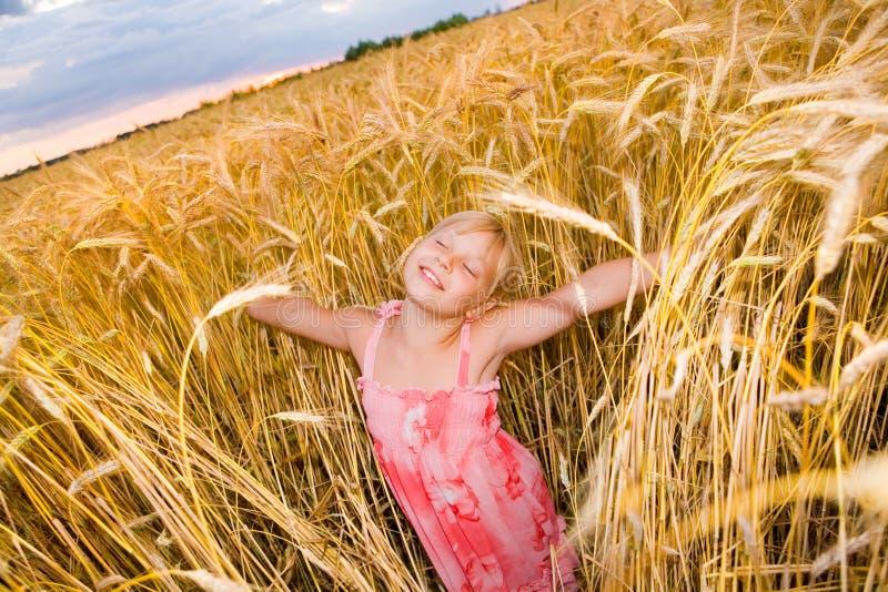 Kleines Mädchen auf einem Weizengebiet mit den geöffneten Armen stockbild