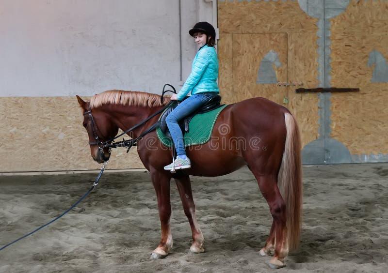 Kleines Mädchen auf zu Pferde lizenzfreies stockbild
