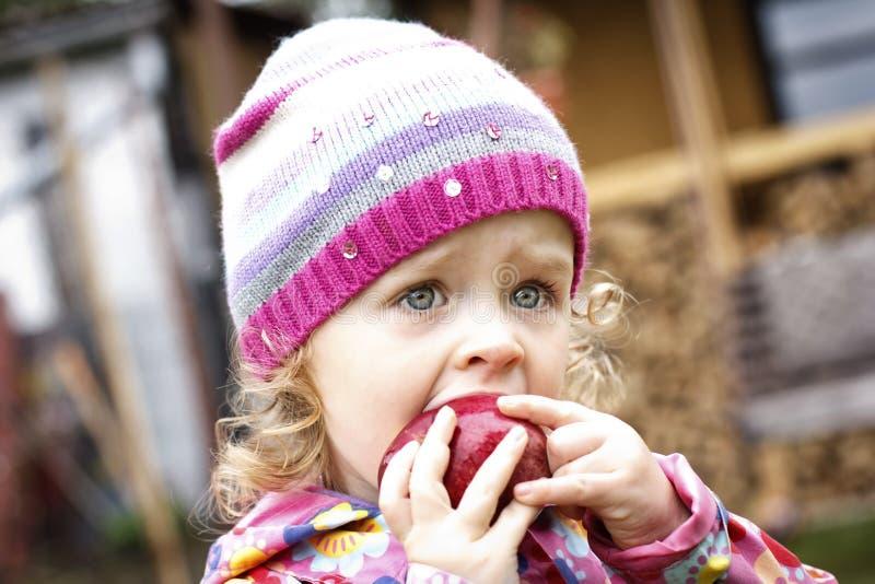 Kleines Mädchen, das Apfel im Herbst isst stockfoto