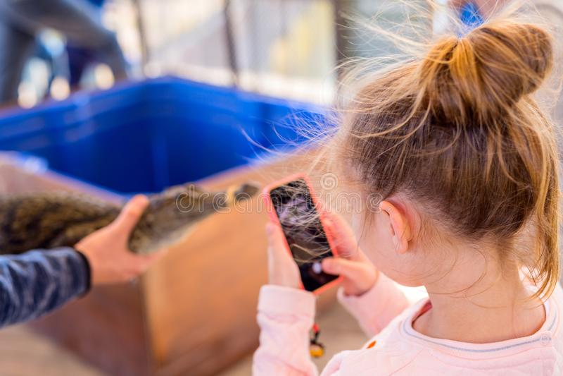 Kleines Mädchen, das Babykrokodil fotografiert lizenzfreies stockbild