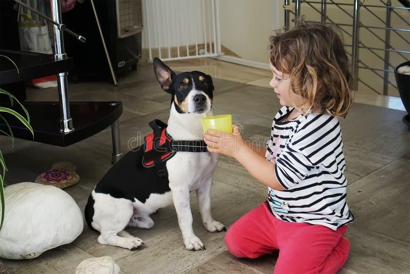 Kleines Mädchen, das dem Hund ein Getränk gibt lizenzfreies stockfoto