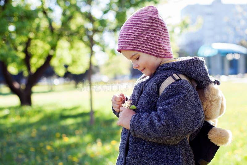 Kleines Mädchen, das eine Blume in den Händen betrachtet stockfotos