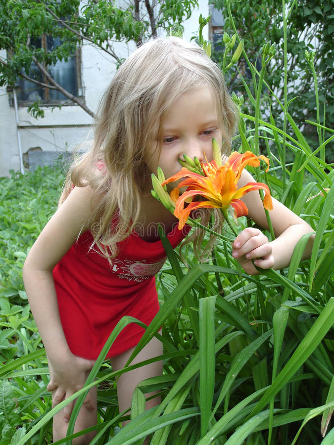 Kleines Mädchen, das eine Blume riecht stockfotos