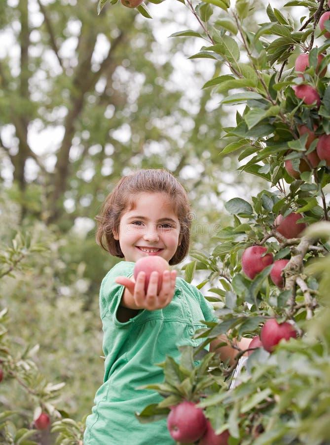 Kleines Mädchen, das einen Apple zeigt stockfotos