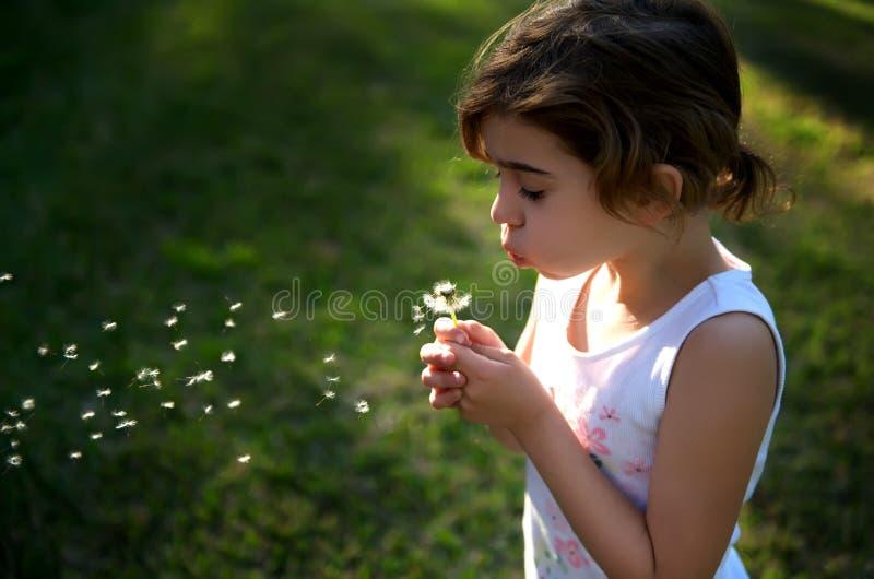 Kleines Mädchen, das einen Löwenzahn durchbrennt und Wunsch bildet stockfoto