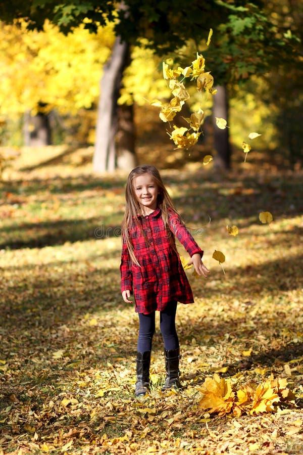 Kleines Mädchen in den orange Blättern des Herbstes outdoor lizenzfreies stockfoto