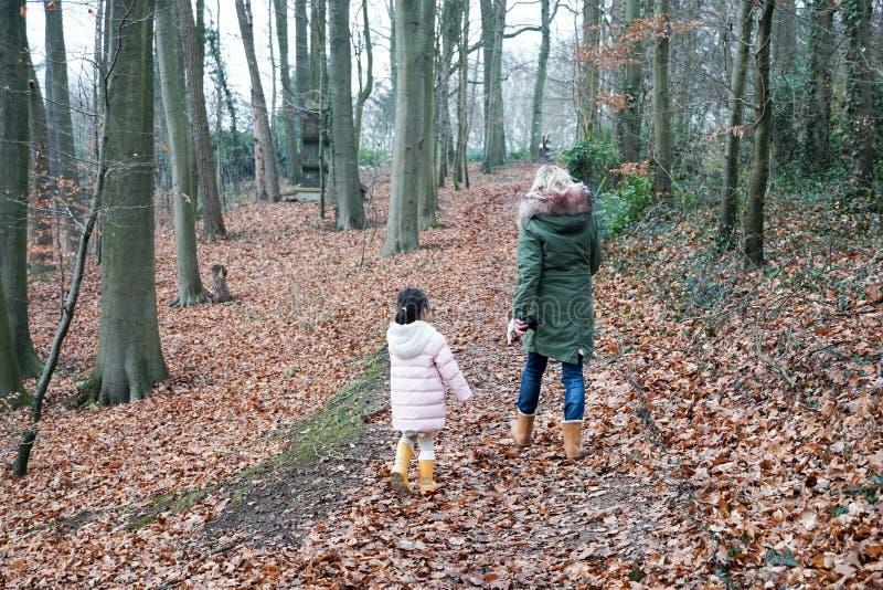Kleines Mädchen der Großmutter und des Enkelkindes, das zusammen mit den Hunden im Landschaftsvorortbereich geht stockfotos