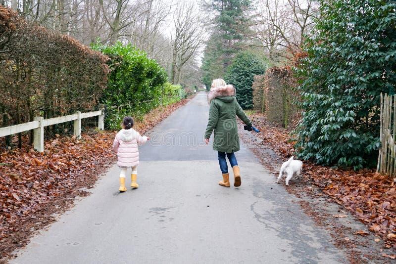 Kleines Mädchen der Großmutter und des Enkelkindes, das zusammen mit den Hunden im Landschaftsvorortbereich geht stockbilder