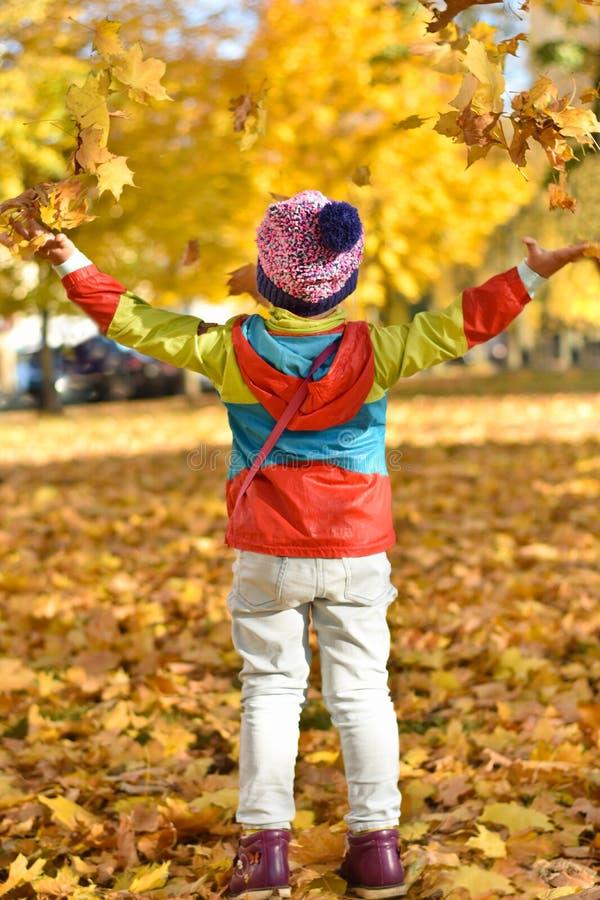 kleines Mädchen in der hellen Kleidung, die mit Blättern spielt stockbilder