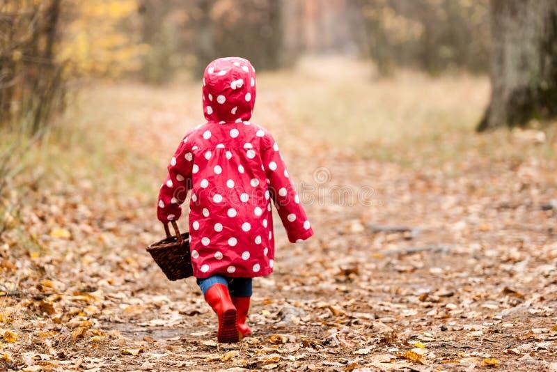 Kleines Mädchen in einer Erbsenjacke gehend in den Wald und FO schauend lizenzfreies stockfoto