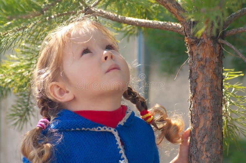 Kleines Mädchen geht in den Wald stockfotografie