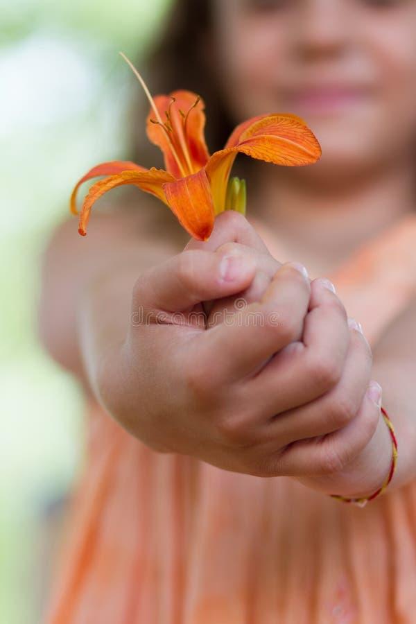 Kleines Mädchen gibt Ihnen Blume der Orange lilly stockbilder