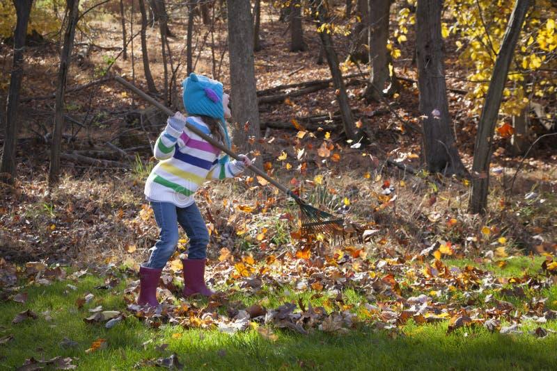 Kleines Mädchen harkt Blätter lizenzfreie stockbilder