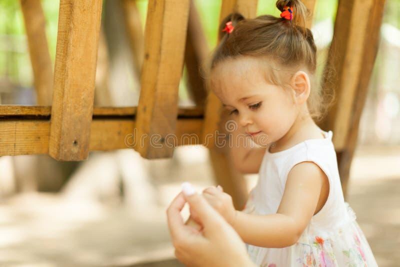 Kleines Mädchen im Kontaktzoo lizenzfreie stockfotografie