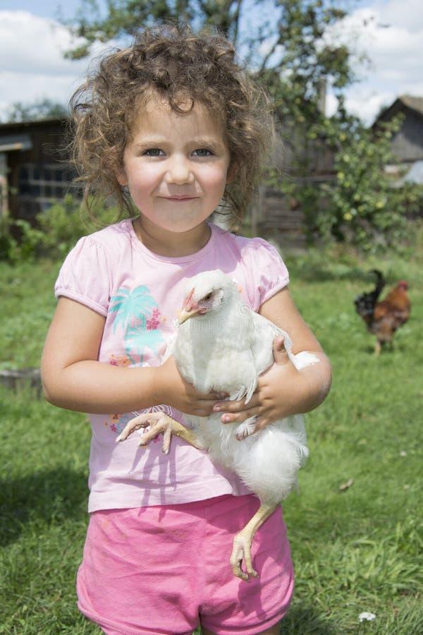 Kleines Mädchen im Sommer im Garten, der ein Huhn hält stockbilder