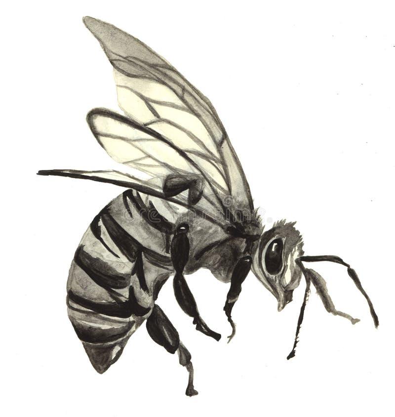 Kleines Mädchen ist Bienenkostüm lizenzfreies stockbild