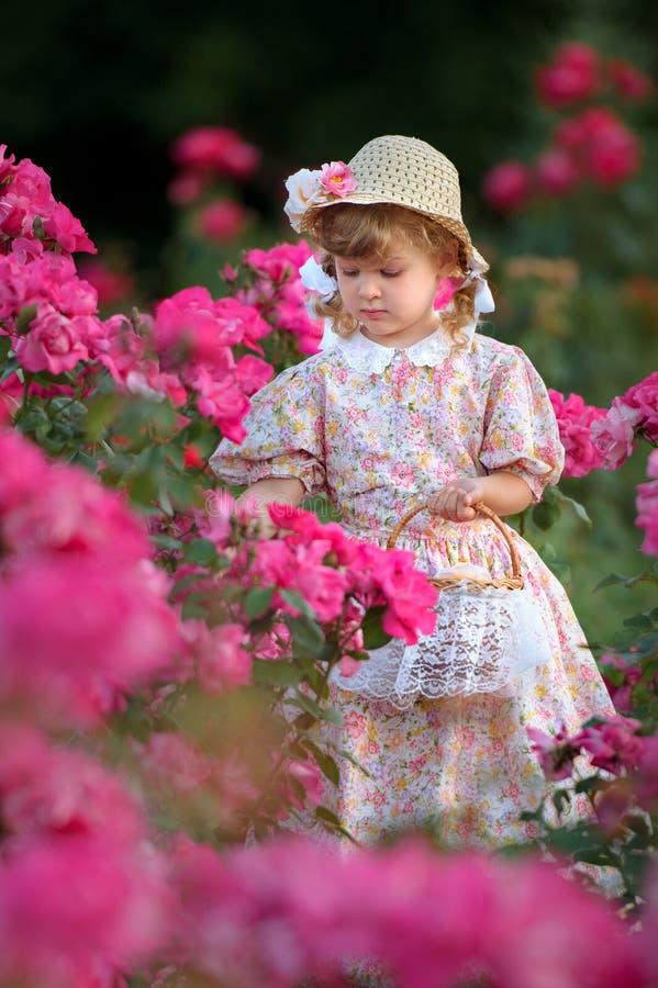 Kleines Mädchen mit einem Korb sammelt Blumenblätter von Rosen lizenzfreies stockbild
