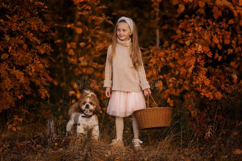 Kleines Mädchen mit einem Korb und einem Hund im Wald lizenzfreie stockfotos