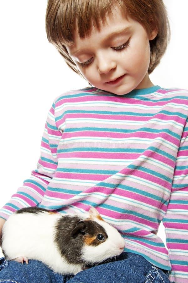 Kleines Mädchen mit Haustiermeerschweinchen lizenzfreie stockfotos