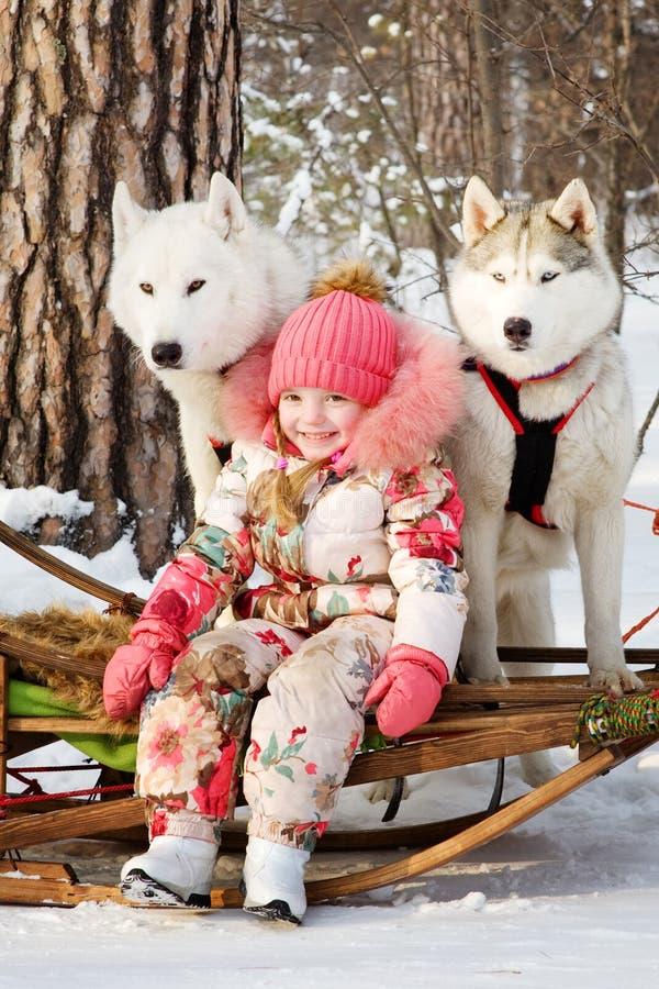 Kleines Mädchen mit heiseren Hunden im Winterpark lizenzfreies stockfoto