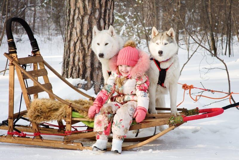 Kleines Mädchen mit heiseren Hunden im Winterpark stockbild