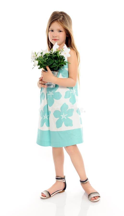 Kleines Mädchen mit weißen Blumen lizenzfreie stockfotografie