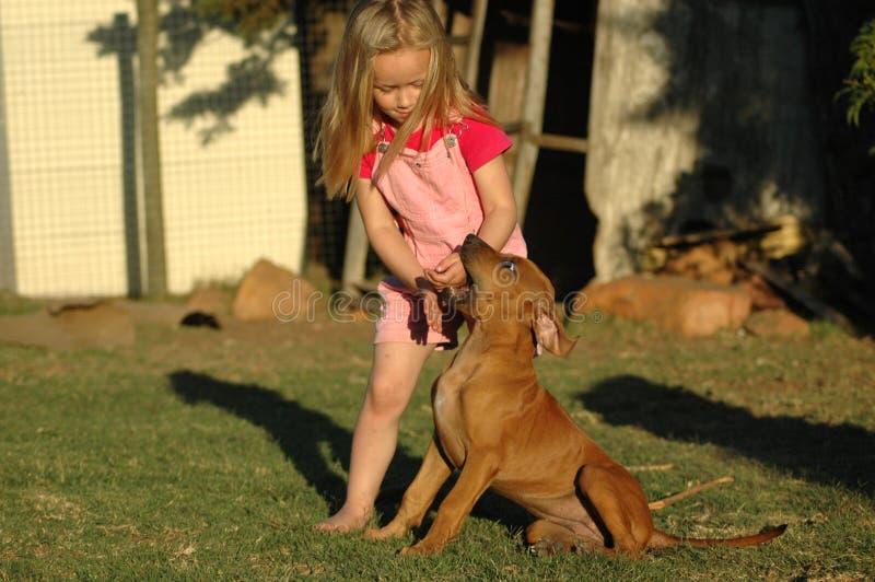 Kleines Mädchen mit Welpen lizenzfreie stockfotos
