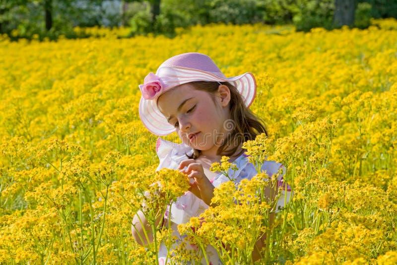 Kleines Mädchen-Sammeln-Blumen lizenzfreies stockbild