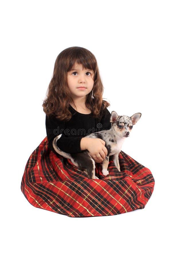 Kleines Mädchen und Chihuahua stockfotografie