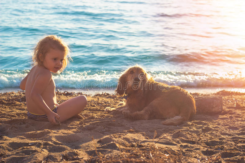 Kleines Mädchen und goldenes cocker spaniel auf dem Strand lizenzfreies stockbild
