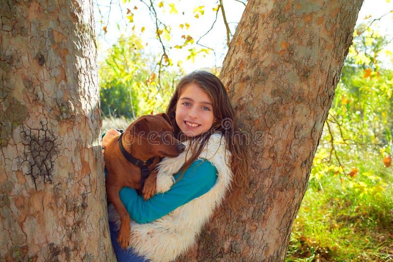 Kleines Mädchen und Hund im Wald stockfotografie