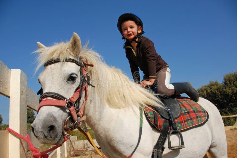 Kleines Mädchen und Shetland stockbilder