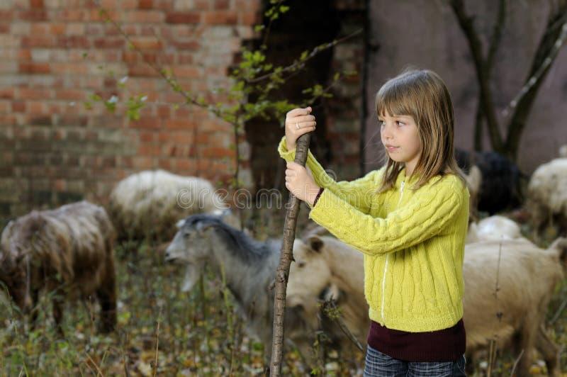 Kleines Mädchen und Tiere stockbild