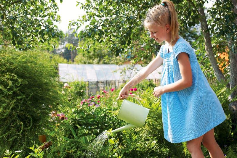 Kleines Mädchen, welches die Blumen im Familiengarten an einem summe wässert stockfotografie
