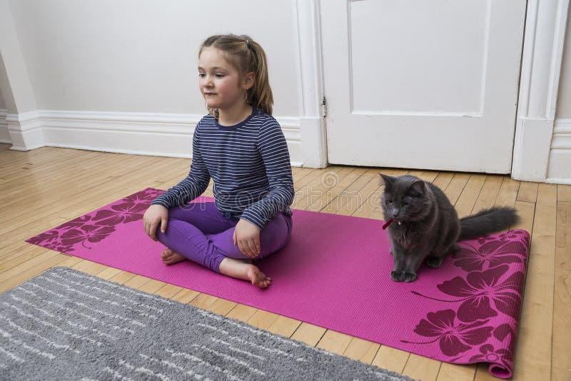 Kleines Mädchen, welches die kreuzen-mit Beinen versehene Sitzenhaltung des Yoga mit grauer Katze tut lizenzfreie stockfotos