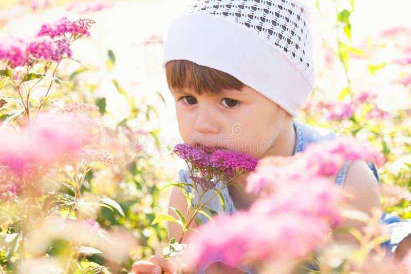 Kleines M?dchen auf einem Gebiet von Blumen stockbild