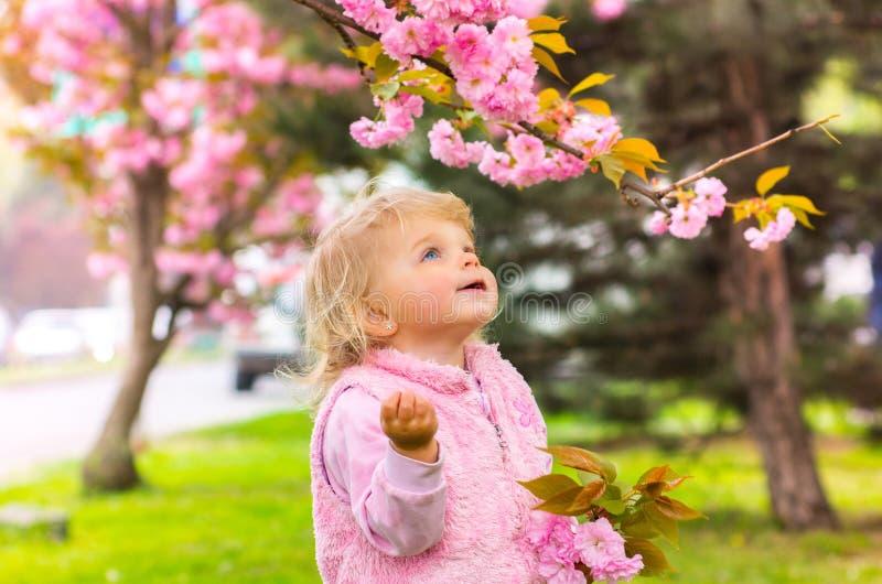 Kleines reizend blondes Mädchen mit den blauen Augen, die Kirsche schauen lizenzfreie stockbilder