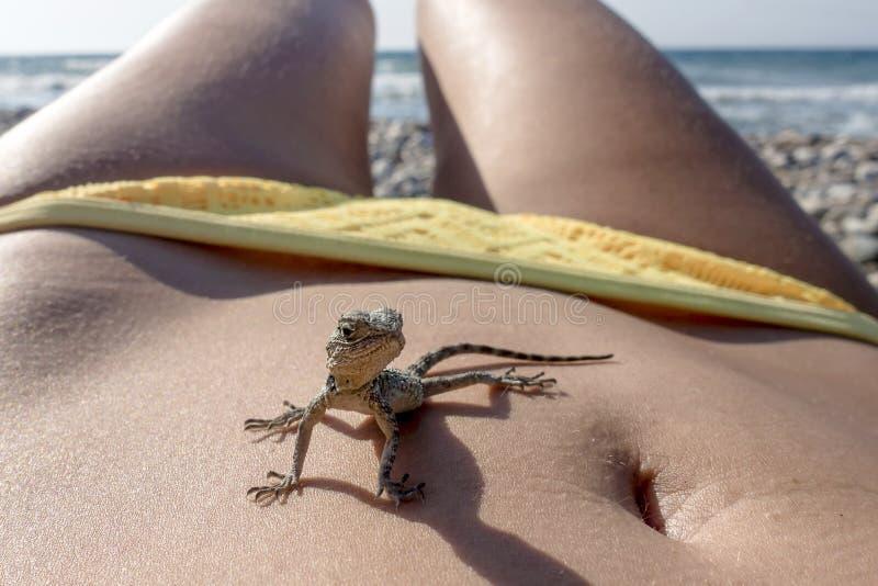 Kleines saurian auf dem menschlichen Körper - wie einem Dinosaurier auf den Ferien in Meer lizenzfreies stockbild