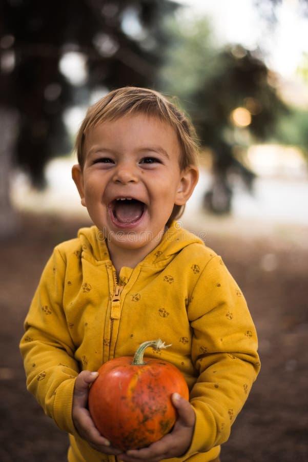 Kleines, schönes Kleinkind, das Kürbis im Freien an sonnigen Herbsttagen hält Halloween-Konzept lizenzfreie stockbilder