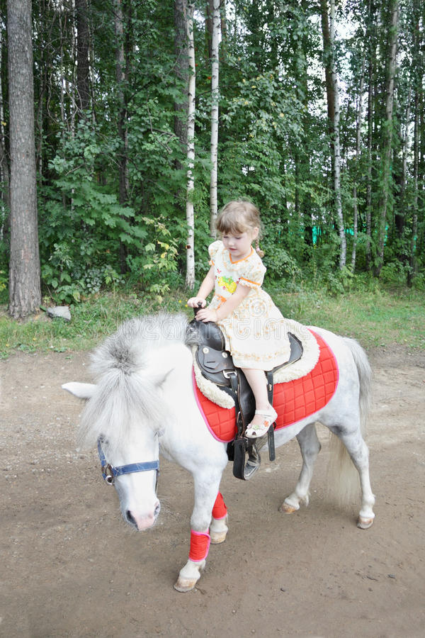 Kleines schönes Mädchen reitet weißes Pony stockbild