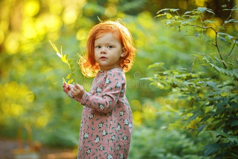 Kleines schönes rothaariges Mädchen im Sommer im Forstbetrieb stockbild