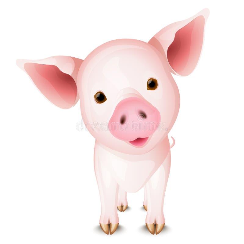 Kleines Schwein stock abbildung