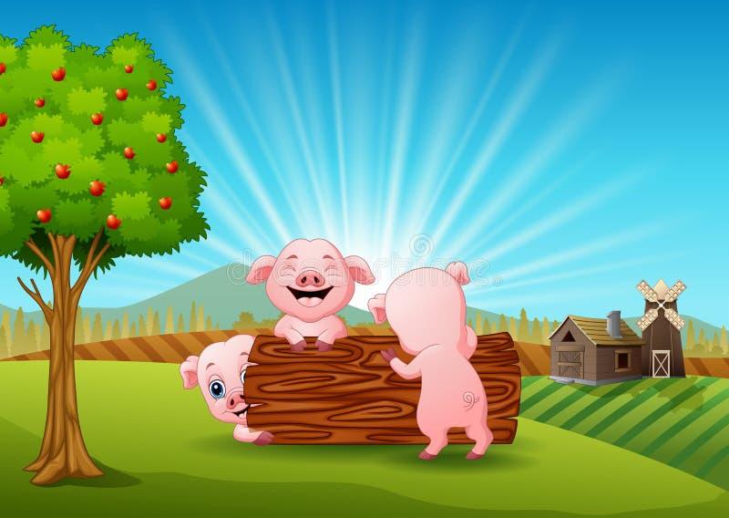 Kleines Schwein drei, das im Bauernhof spielt vektor abbildung