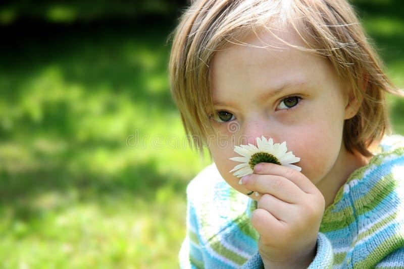 Kleines träumerisches Mädchen lizenzfreie stockfotos