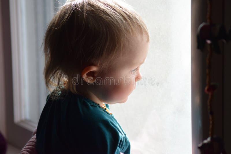 Kleinkind, das aus einem Fenster heraus anstarrt stockbild