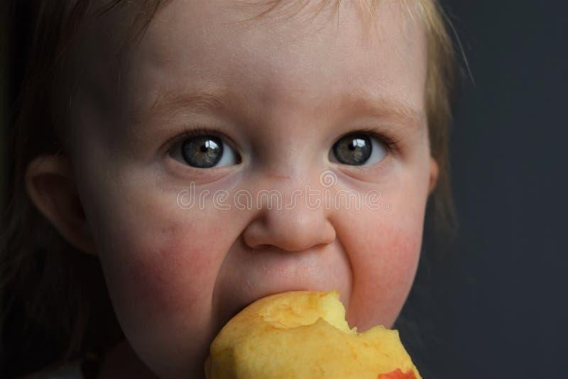 Kleinkind, das einen Apfel isst lizenzfreie stockbilder
